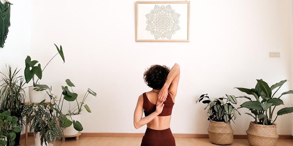 Yoga et anatomie des épaules