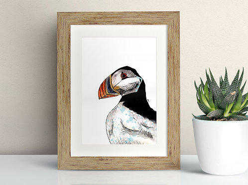 Atlantic Puffin framed art illustration by Rebecca Sawyer at R.Sawyer Designs