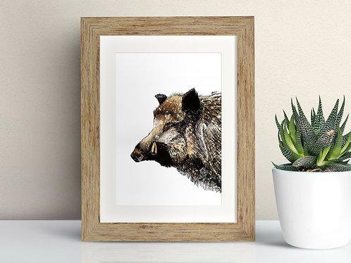 Wild Boar framed art illustration by Rebecca Sawyer at R.Sawyer Designs