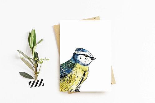 Blue tit greeting card by Rebecca Sawyer at R.Sawyer Designs
