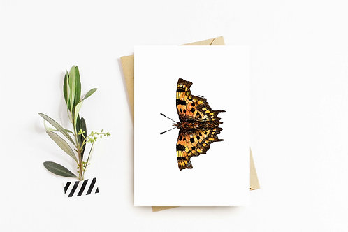 Comma Butterfly greeting card by Rebecca Sawyer at R.Sawyer Designs