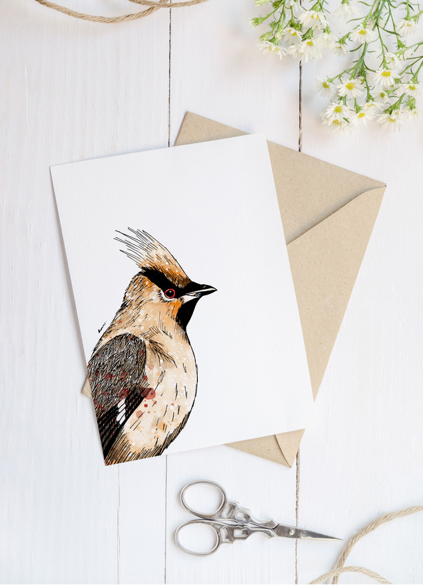 Waxwing blank greetings card