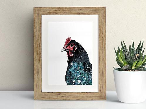Welsh Black Fowl framed art illustration by Rebecca Sawyer at R.Sawyer Designs