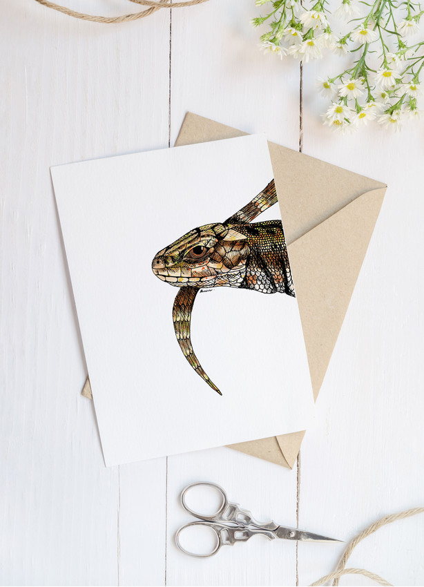 Common Lizard blank greetings card