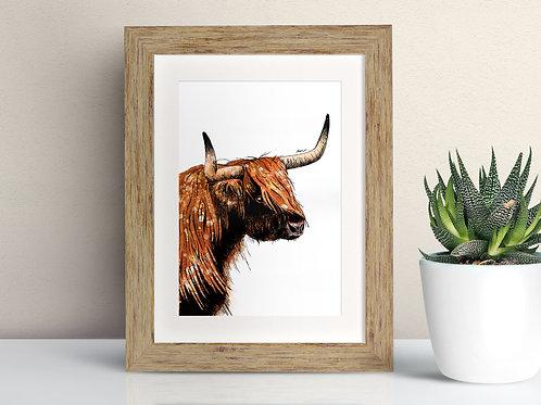 Highland Cow framed art illustration by Rebecca Sawyer at R.Sawyer Designs
