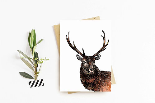 Red Deer greeting card by Rebecca Sawyer at R.Sawyer Designs