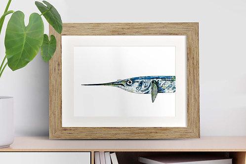Garfish framed art illustration by Rebecca Sawyer at R.Sawyer Designs