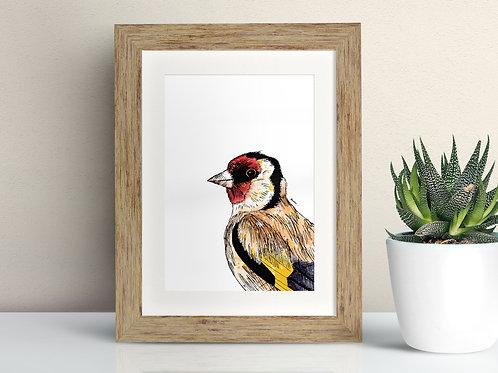 Goldfinch framed art illustration by Rebecca Sawyer at R.Sawyer Designs
