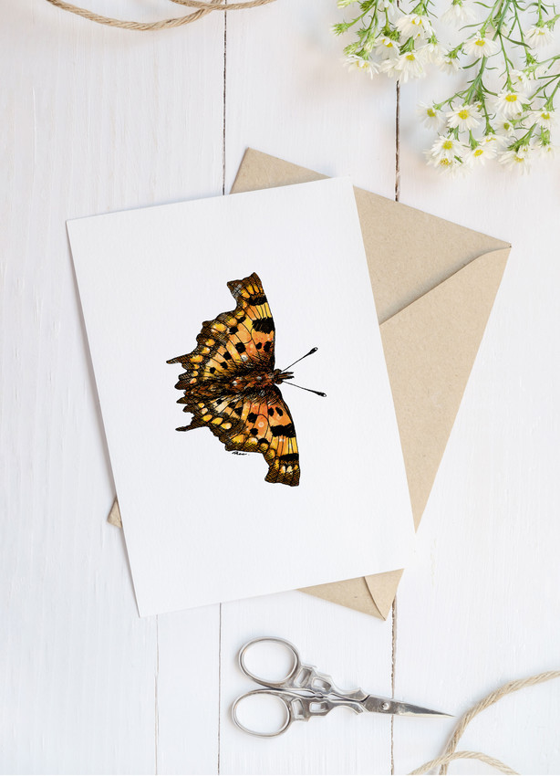 Comma butterfly blank greetings card