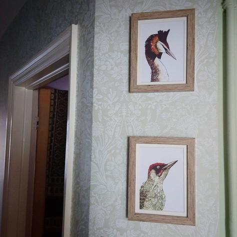Framed art prints for sale