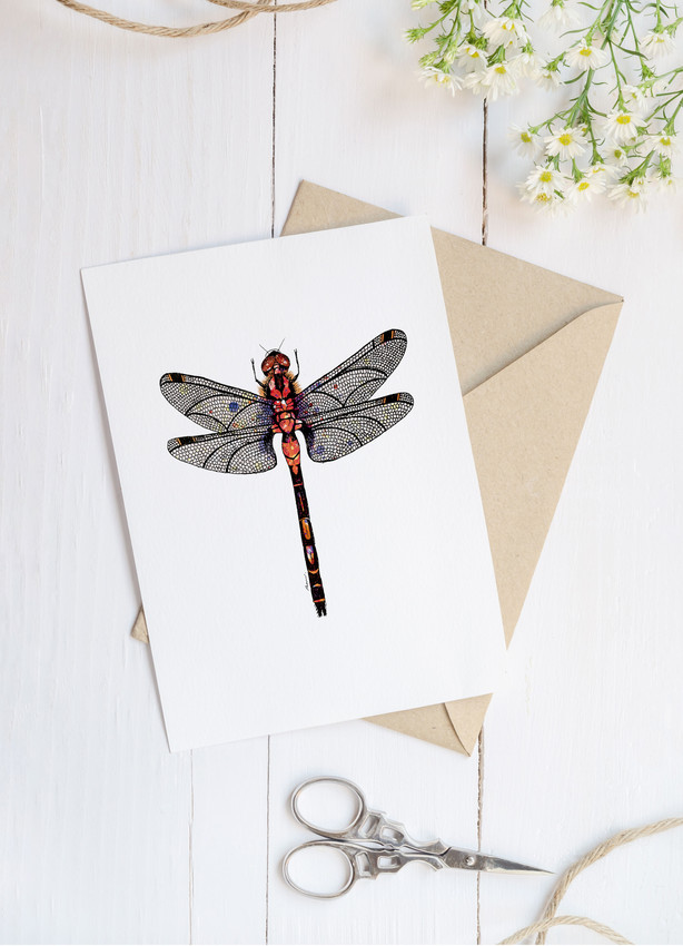 White faced Darter blank greetings card