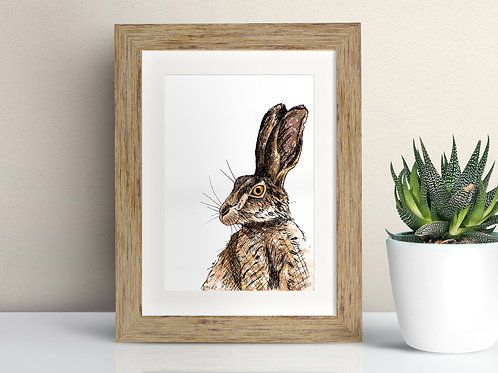 Brown Hare framed art illustration by Rebecca Sawyer at R.Sawyer Designs