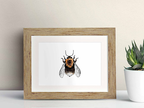 Tree Bumblebee framed art illustration by Rebecca Sawyer at R.Sawyer Designs