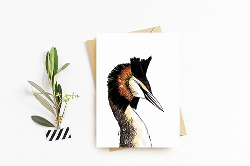 Great Crested Grebe greeting card by Rebecca Sawyer at R.Sawyer Designs