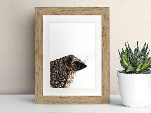 Hedgehog framed art illustration by Rebecca Sawyer at R.Sawyer Designs