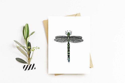 Southern Hawker Dragonfly greeting card by Rebecca Sawyer at R.Sawyer Designs