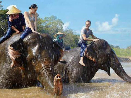 Some days you're just a glorified mahout