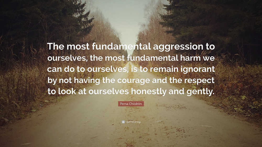 173377-Pema-Ch-dr-n-Quote-The-most-fundamental-aggression-to-ourselves