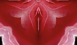 clitoris.jpg
