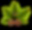 pinheiro-2031696_1920 (1).png