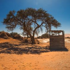 Desert Water Closet