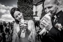 Hochzeitsfotograf Ellwangen Hochzeitsfotografie Tauben