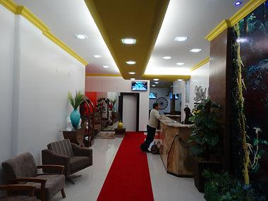 Hotel Palace Carangola