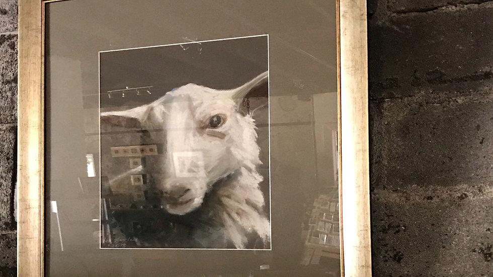 Sheep 2018