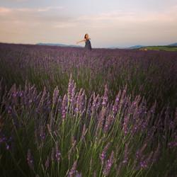 Victoria in lavender copy