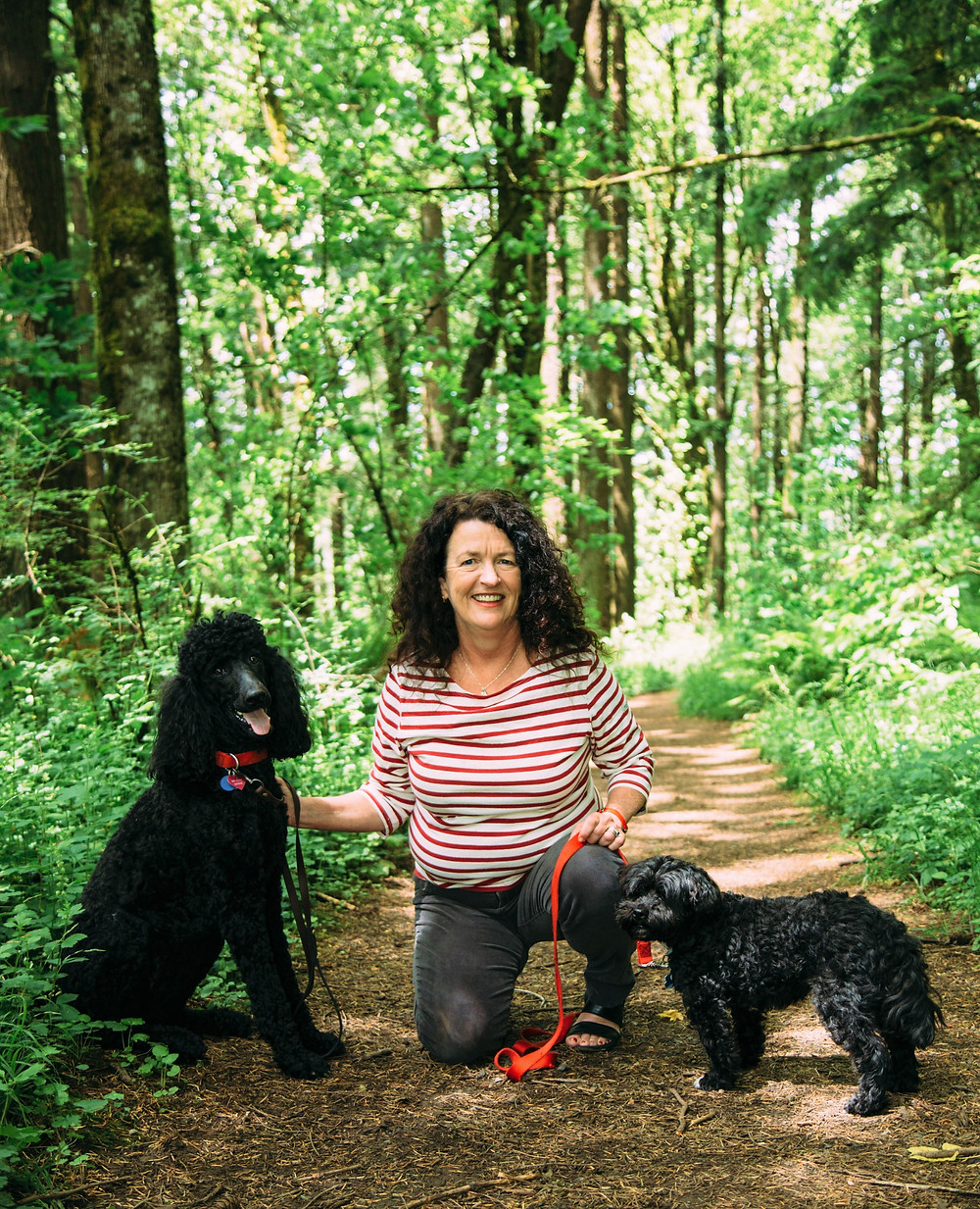Kate and her two dogs are on the forest trail