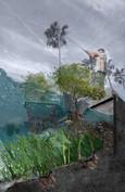 Cocoa Beach Living Shoreline