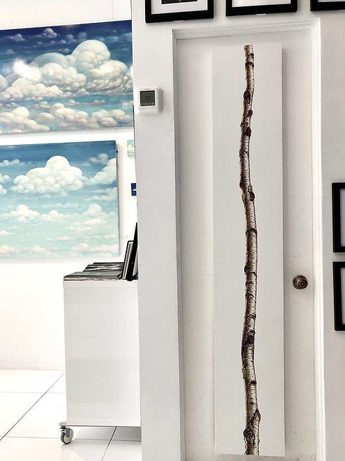 """White Birch oil on Panel 12"""" x 72"""" Daniel Tousignant"""
