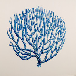 blue coral I oil on wood  24 x 24