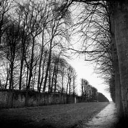 Landscape Study 7, France