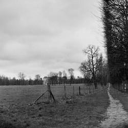 Landscape Study 4, France