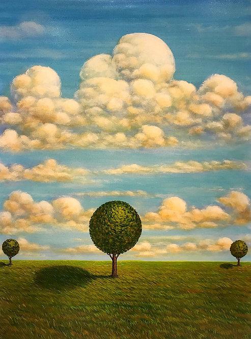 """Three Trees Oil on Canvas, 30"""" x 40"""""""