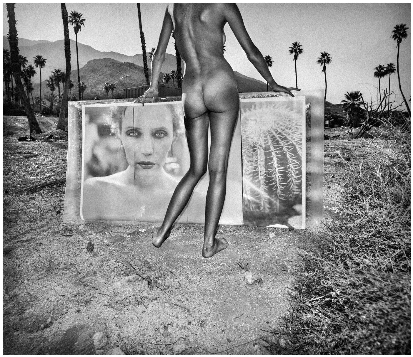 Brandise Palm Springs Backlit 2