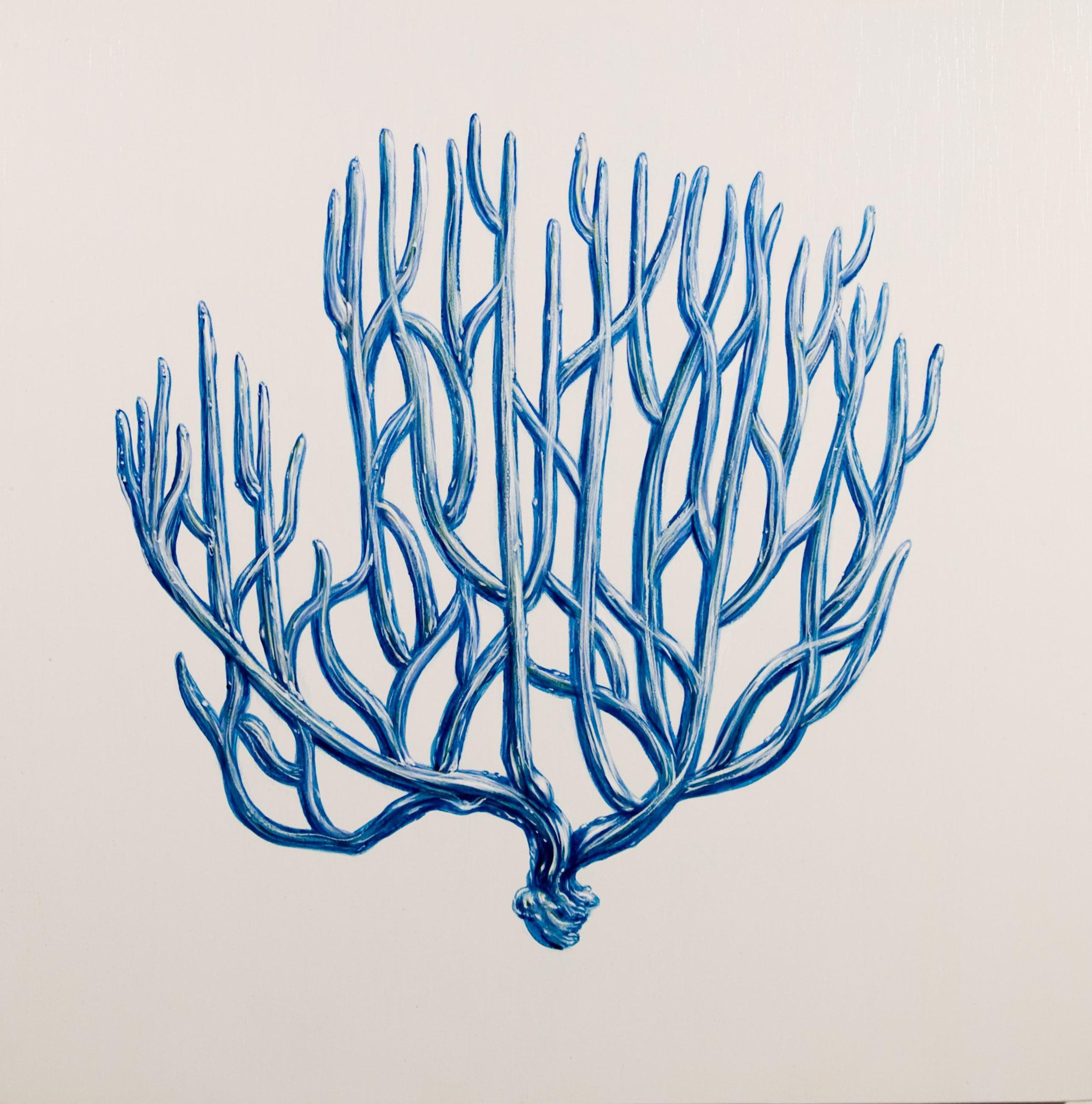 blue coral II oil on wood 24 x 24