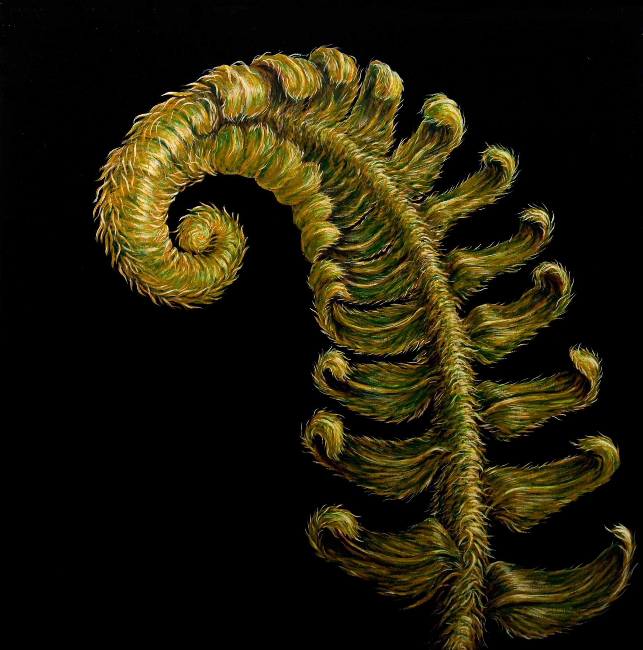 fern 2012 36 x 36 lowres