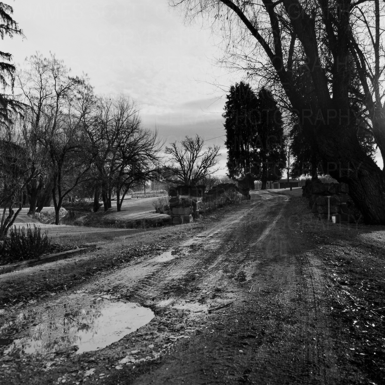 Landscape Study 1, Yakima