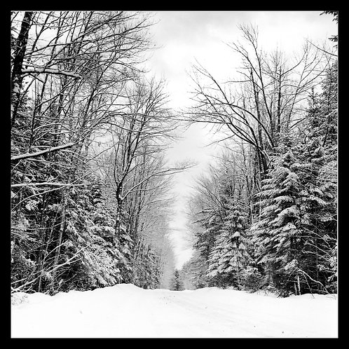 Whitefield III, Maine