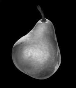 05_pear