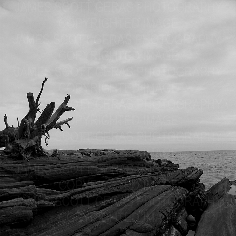 Landscape 41, Lands End