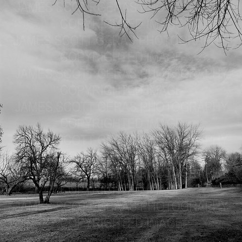 Landscape Study 2, Yakima