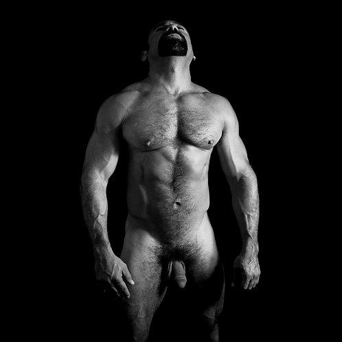 Erotic 88