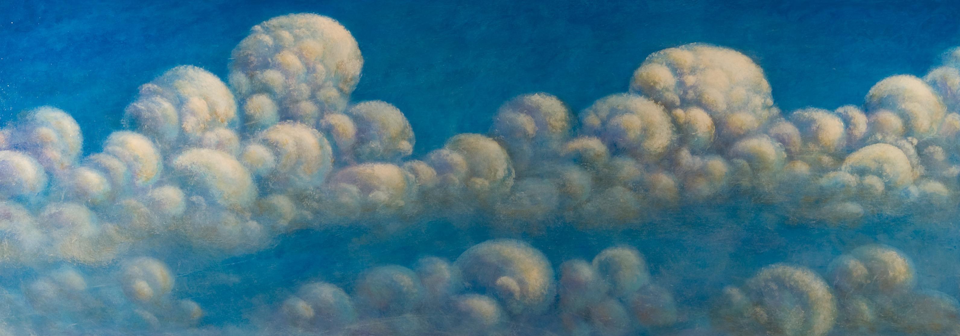 Sky 2009 30 x 84