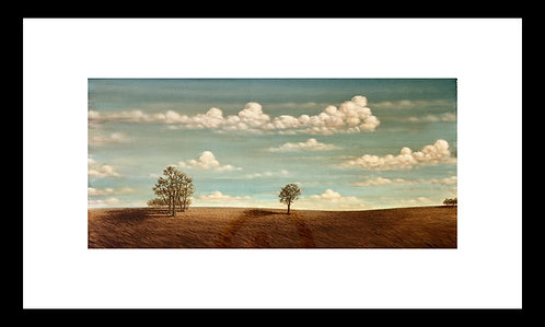 Long Landscape, Live Oak