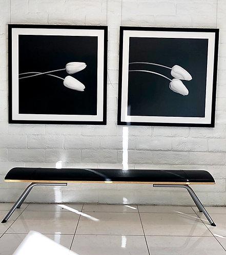 "Tulip Study I & II  30"" x 30"" Framed"