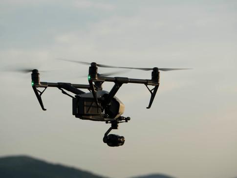 """Empleamos drones y modelos matemáticos predictivos para conservar la """"Cargola del Cap de Creus"""""""