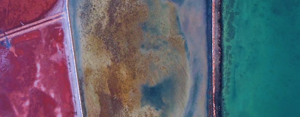 The blue skin island - SQ 3.00_01_51_06.